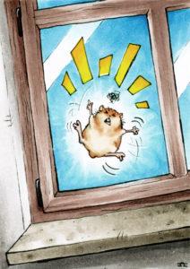 Es tobt der Hamster ...