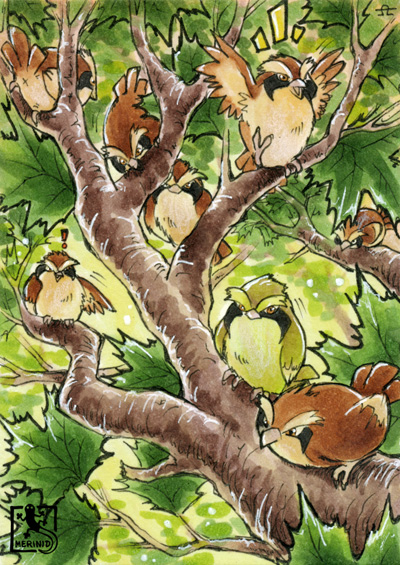 Taubsis im Baum