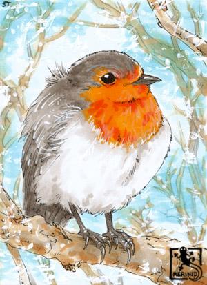 Rotkehlchen Vogel