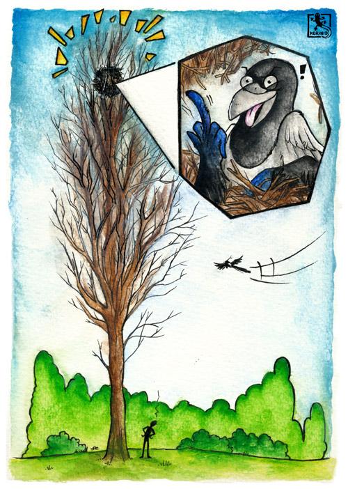 Ein Aquarellbild mit einem hohen Baum, in dem ganz oben ein Elsternnest gebaut wurde